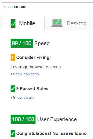 pagespeed99