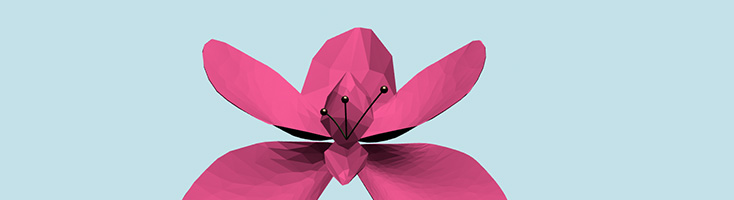 3D-цветок