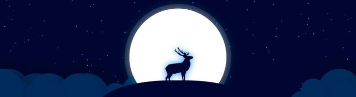 Анимация с лосем в лунном свете