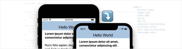 Понимание вьюпорта WebView в iOS 11